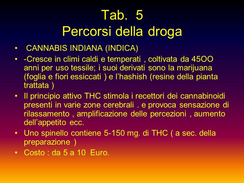 D. G. :Oppio e derivati –Stupefacenti non oppiacei-ipnotici barbiturici- ipnotici non barbiturici- -D. S. : Cocaina- Amfetamine- Anoressizzanti – psic