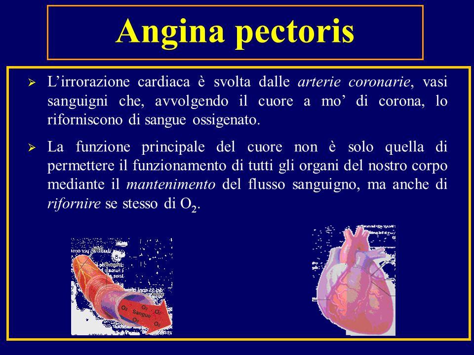 Lirrorazione cardiaca è svolta dalle arterie coronarie, vasi sanguigni che, avvolgendo il cuore a mo di corona, lo riforniscono di sangue ossigenato.