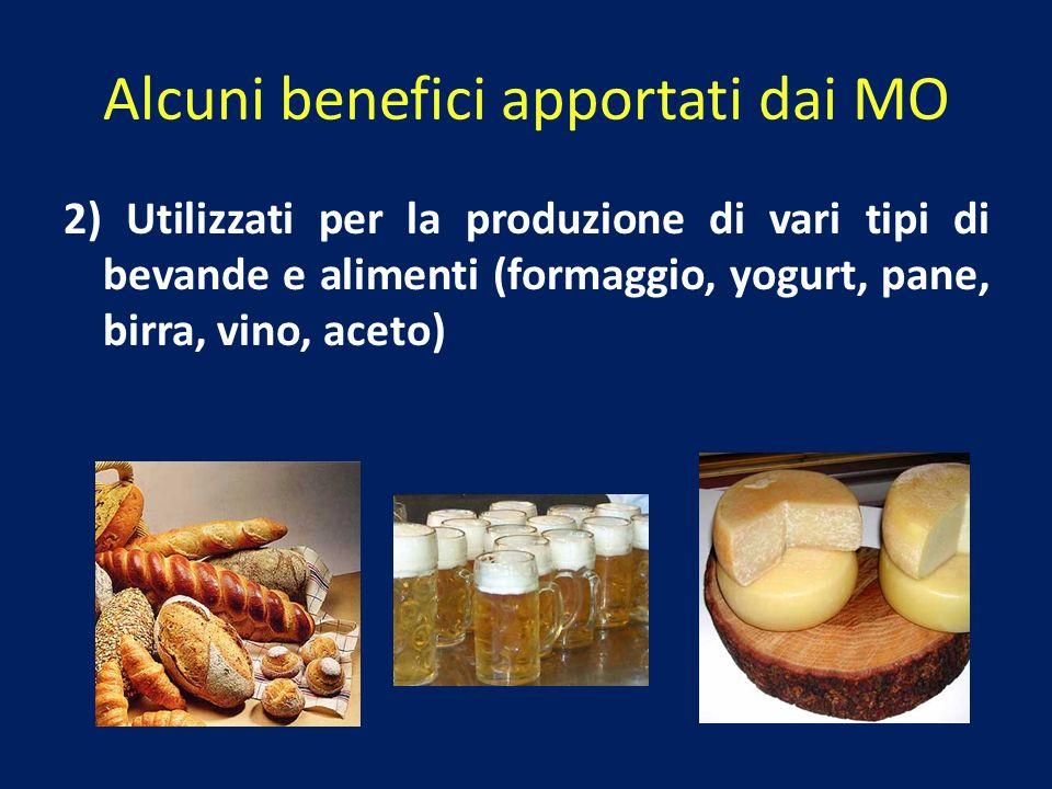 2) Utilizzati per la produzione di vari tipi di bevande e alimenti (formaggio, yogurt, pane, birra, vino, aceto) Alcuni benefici apportati dai MO