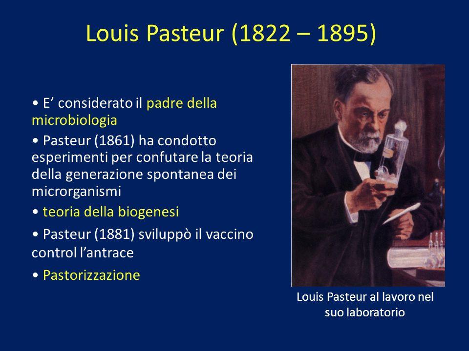 Louis Pasteur (1822 – 1895) E considerato il padre della microbiologia Pasteur (1861) ha condotto esperimenti per confutare la teoria della generazion