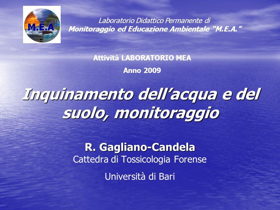 Inquinamento dellacqua e del suolo, monitoraggio R. Gagliano-Candela Inquinamento dellacqua e del suolo, monitoraggio R. Gagliano-Candela Cattedra di