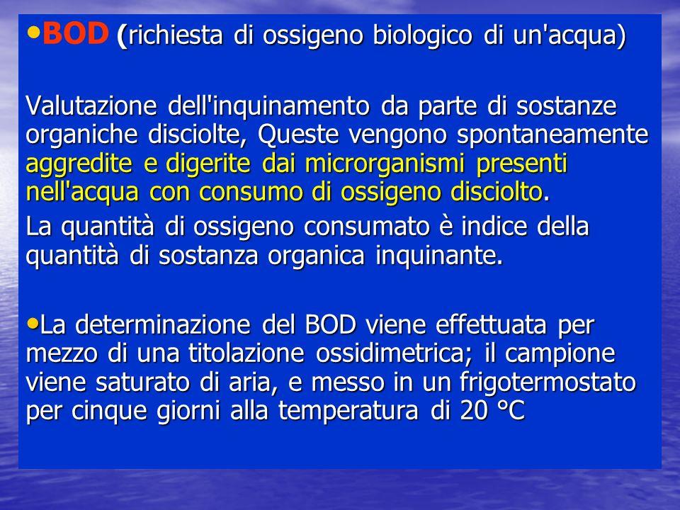 (richiesta di ossigeno biologico di un'acqua) BOD (richiesta di ossigeno biologico di un'acqua) Valutazione dell'inquinamento da parte di sostanze org