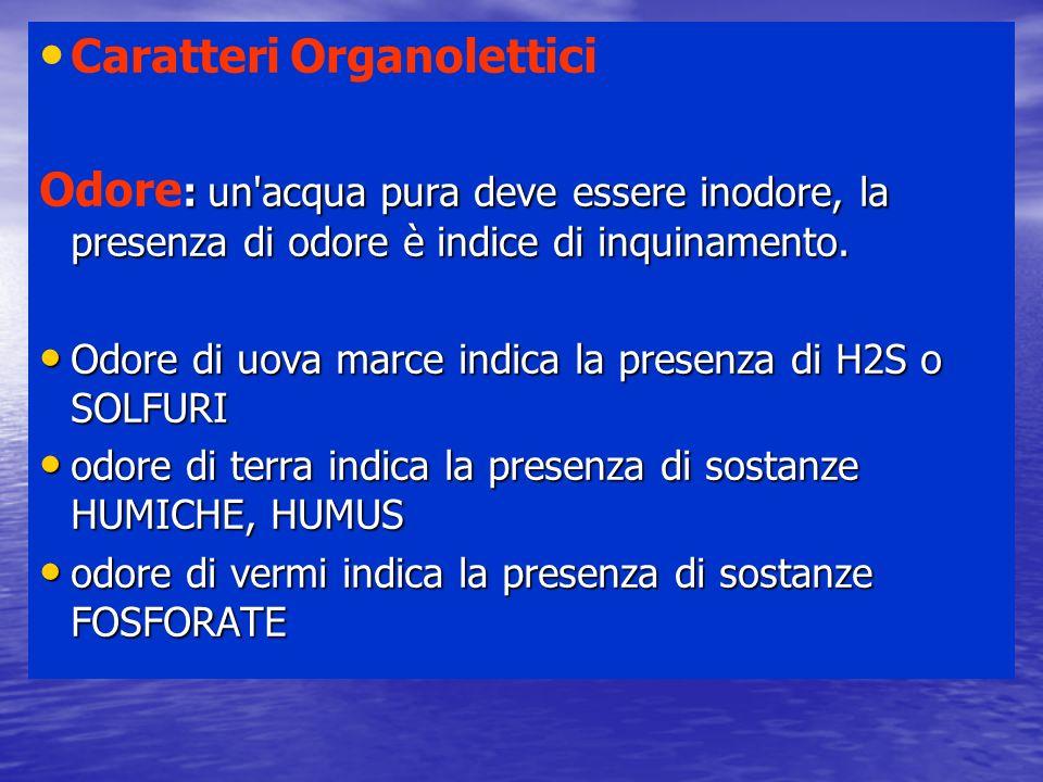 Caratteri Organolettici : un'acqua pura deve essere inodore, la presenza di odore è indice di inquinamento. Odore : un'acqua pura deve essere inodore,