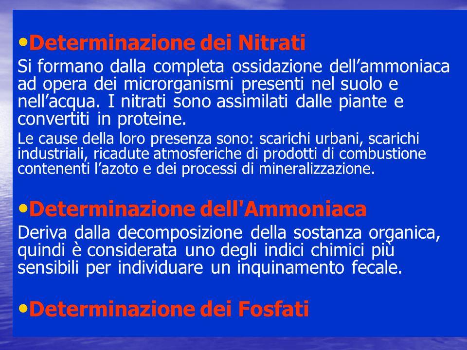 Determinazione dei Nitrati Si formano dalla completa ossidazione dellammoniaca ad opera dei microrganismi presenti nel suolo e nellacqua. I nitrati so