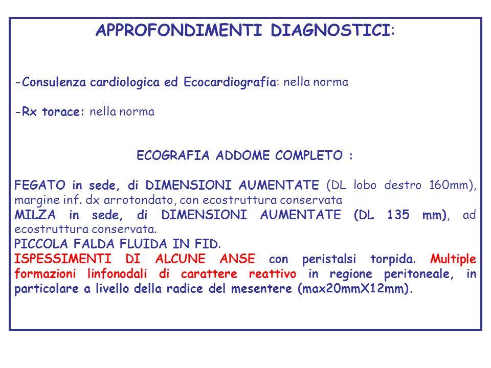 APPROFONDIMENTI DIAGNOSTICI: -Consulenza cardiologica ed Ecocardiografia: nella norma -Rx torace: nella norma ECOGRAFIA ADDOME COMPLETO : FEGATO in se