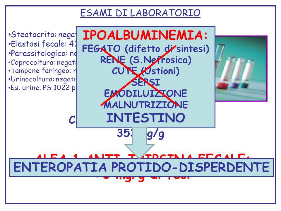 ESAMI DI LABORATORIO Steatocrito: negativo Elastasi fecale: 473 microgE1/gr feci Parassitologico: negativo Coprocoltura: negativa Tampone faringeo: ne