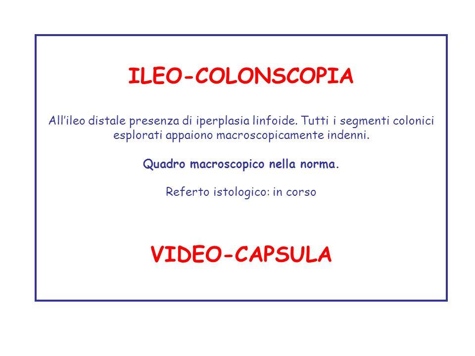 ILEO-COLONSCOPIA Allileo distale presenza di iperplasia linfoide. Tutti i segmenti colonici esplorati appaiono macroscopicamente indenni. Quadro macro