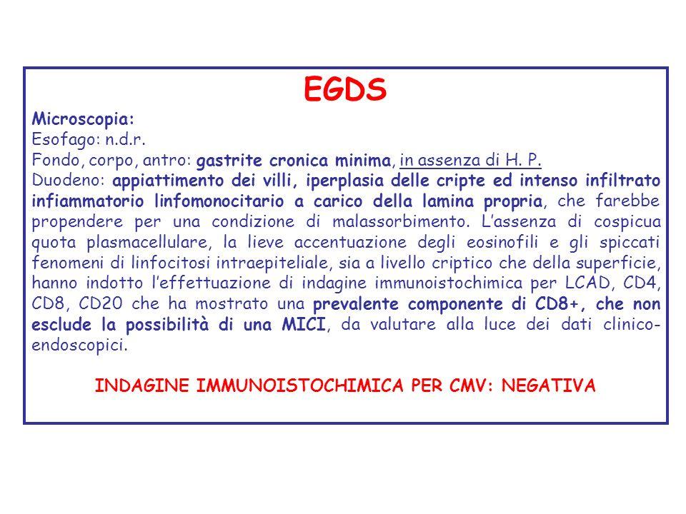 EGDS Microscopia: Esofago: n.d.r. Fondo, corpo, antro: gastrite cronica minima, in assenza di H. P. Duodeno: appiattimento dei villi, iperplasia delle