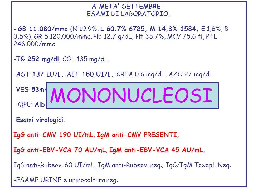 CAUSE DI ENTEROPATIA PROTIDO-DISPERDENTE DANNO MUCOSALE Malattie infiammatorie e ulcerative MICI Infezioni o batteriche, parassitarie, virali Tumori gastrointetinali o adenoK, linfoma, sarcoma di Kaposi Enteropatia NSAID Graft versus host disease Enterocolite Necrotizzante Ileiti Ulcerative Post-chemioterapia Malattie non ulcerative Menetriers Disease Gastroenterite eosinofila Enteropatia allergica Malattia celiaca Sprue tropicale Disordini vasculitici (SLE, HSP) S.