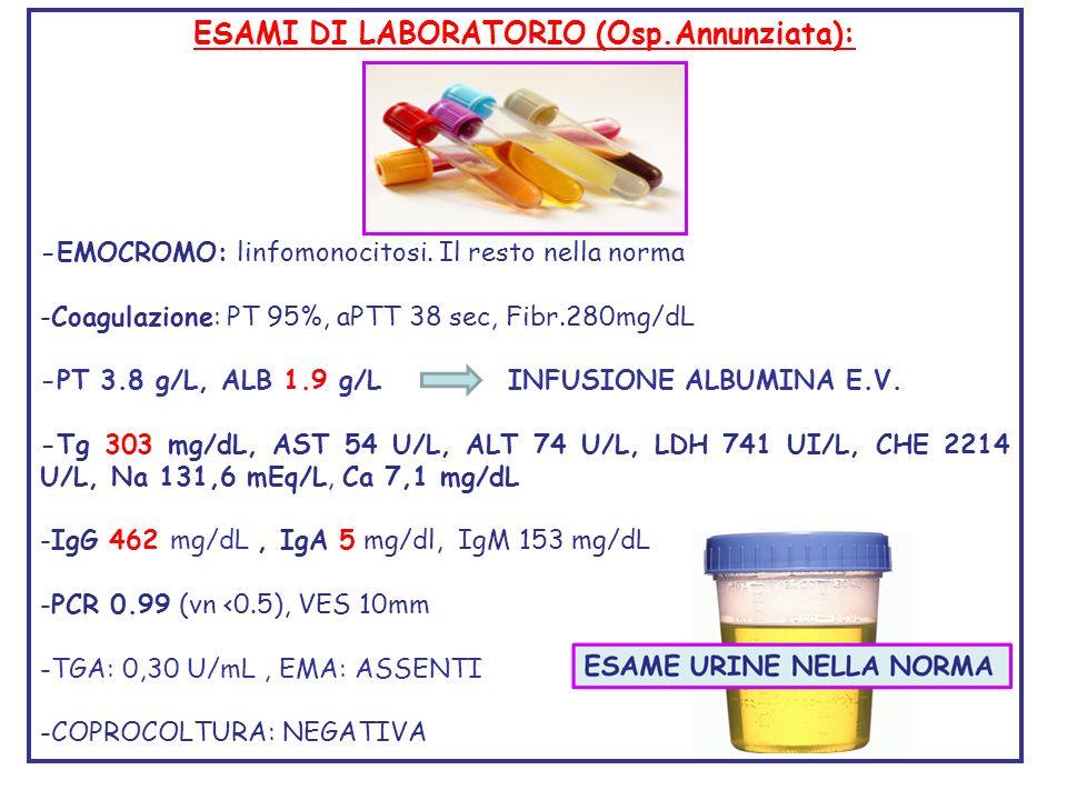 ESAMI DI LABORATORIO (Osp.Annunziata): -EMOCROMO: linfomonocitosi. Il resto nella norma -Coagulazione: PT 95%, aPTT 38 sec, Fibr.280mg/dL -PT 3.8 g/L,
