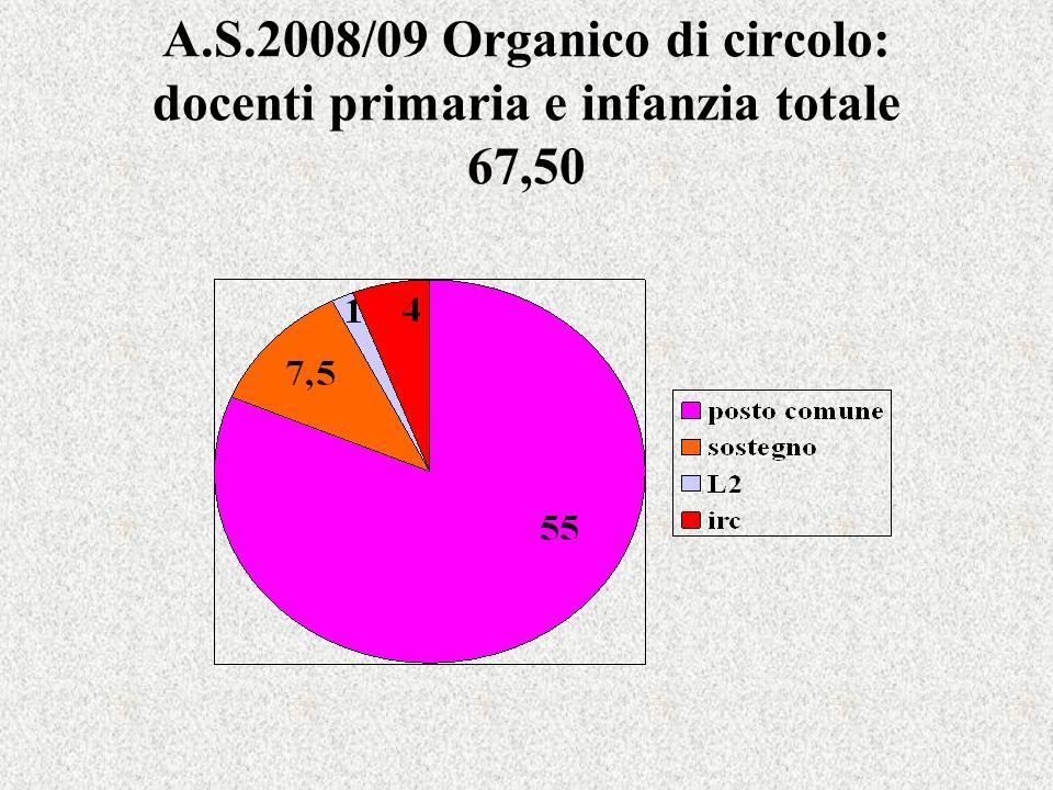 A.S.2008/09 Organico di circolo: docenti primaria e infanzia totale 67,50