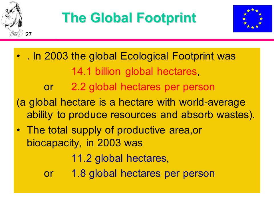 27 The Global Footprint. In 2003 the global Ecological Footprint was 14.1 billion global hectares, or 2.2 global hectares per person (a global hectare