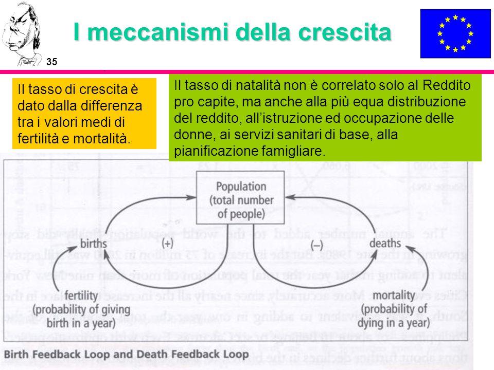 35 I meccanismi della crescita Il tasso di crescita è dato dalla differenza tra i valori medi di fertilità e mortalità. Il tasso di natalità non è cor