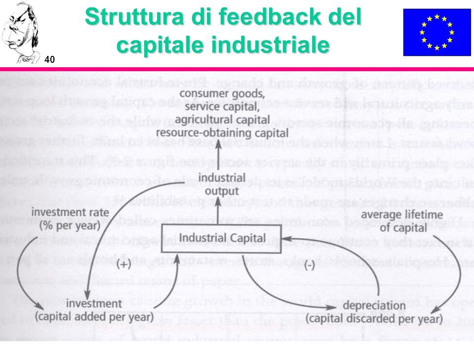 40 Struttura di feedback del capitale industriale