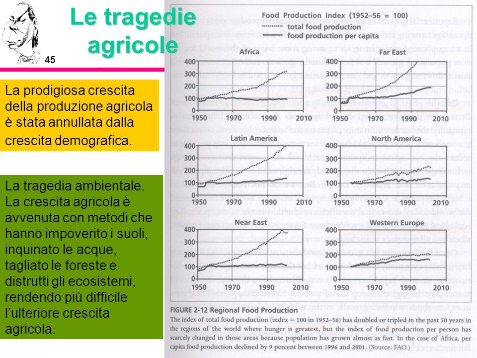45 Le tragedie agricole La prodigiosa crescita della produzione agricola è stata annullata dalla crescita demografica. La tragedia ambientale. La cres