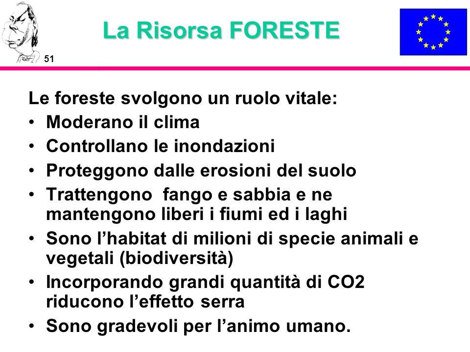 51 La Risorsa FORESTE Le foreste svolgono un ruolo vitale: Moderano il clima Controllano le inondazioni Proteggono dalle erosioni del suolo Trattengon