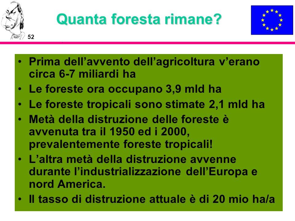 52 Quanta foresta rimane? Prima dellavvento dellagricoltura verano circa 6-7 miliardi ha Le foreste ora occupano 3,9 mld ha Le foreste tropicali sono