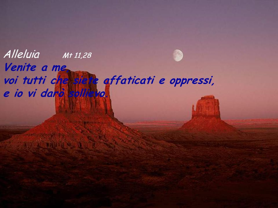 Alleluia Mt 11,28 Venite a me, voi tutti che siete affaticati e oppressi, e io vi darò sollievo.