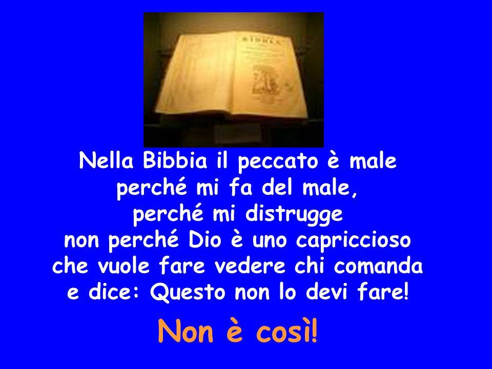 Nella Bibbia il peccato è male perché mi fa del male, perché mi distrugge non perché Dio è uno capriccioso che vuole fare vedere chi comanda e dice: Q
