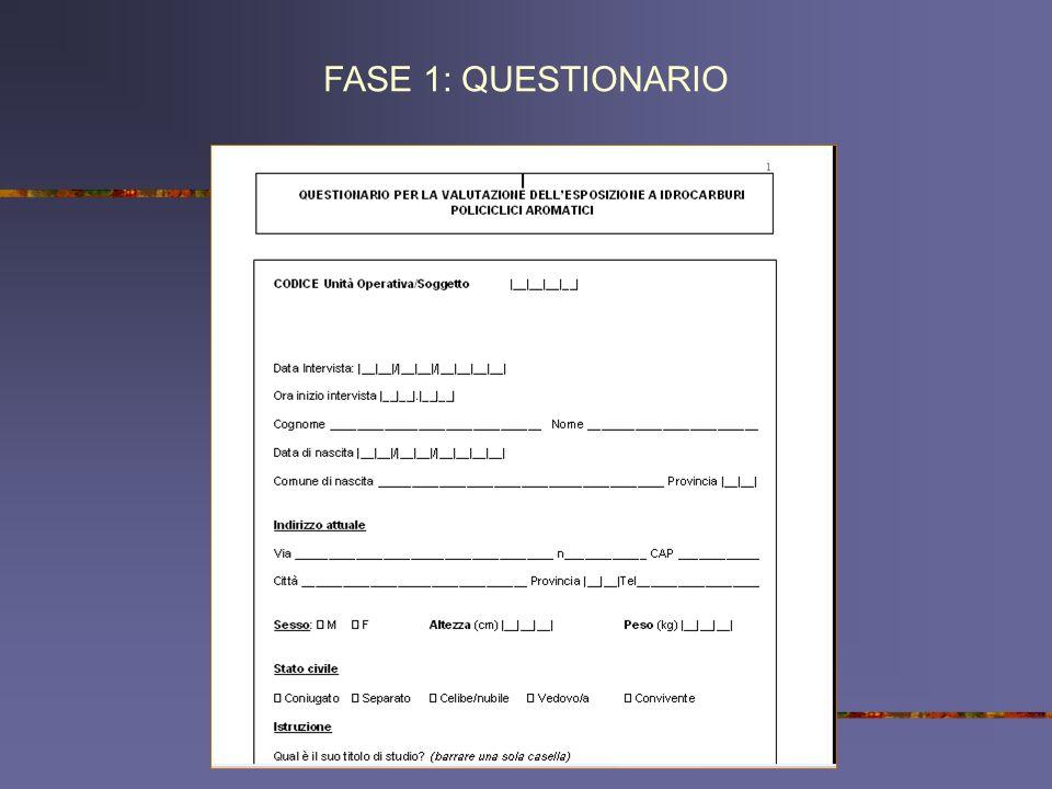 FASE 1: QUESTIONARIO