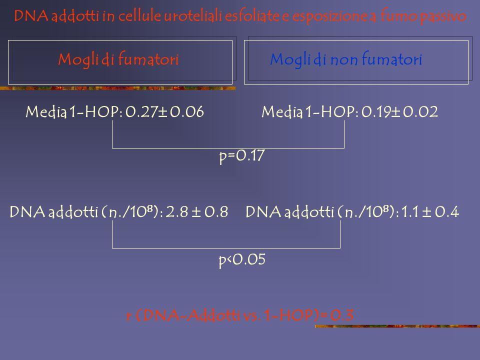 Mogli di fumatoriMogli di non fumatori Media 1-HOP: 0.27 0.06Media 1-HOP: 0.19 0.02 p=0.17 DNA addotti (n./10 8 ): 2.8 0.8DNA addotti (n./10 8 ): 1.1