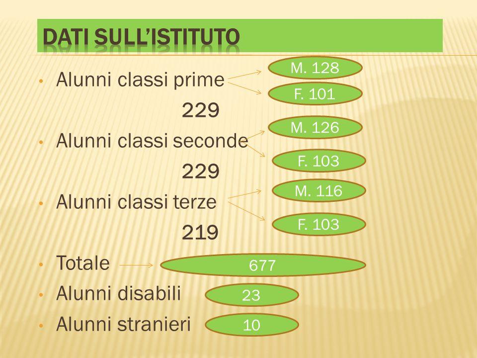 Alunni classi prime 229 Alunni classi seconde 229 Alunni classi terze 219 Totale Alunni disabili Alunni stranieri M. 128 F. 101 M. 126 F. 103 M. 116 F