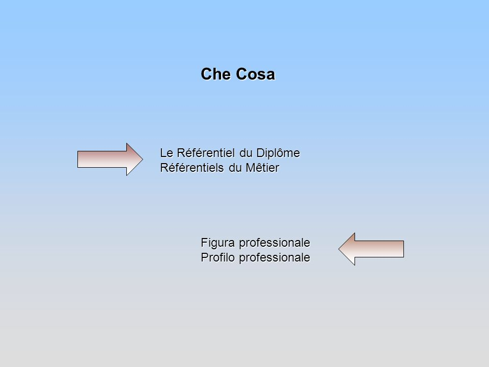 Che Cosa Le Référentiel du Diplôme Référentiels du Mêtier Figura professionale Profilo professionale