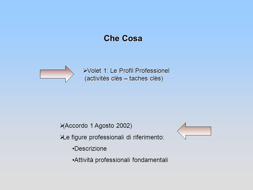 Volet 1: Le Profil Professionel (activités clès – taches clès) Volet 1: Le Profil Professionel (activités clès – taches clès) Che Cosa (Accordo 1 Agos
