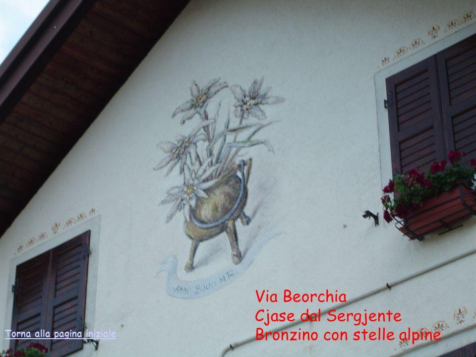 Via Beorchia Cjase dal Sergjente Bronzino con stelle alpine Torna alla pagina iniziale