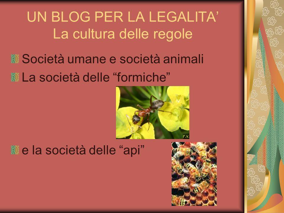 UN BLOG PER LA LEGALITA La cultura delle regole Società umane e società animali La società delle formiche e la società delle api