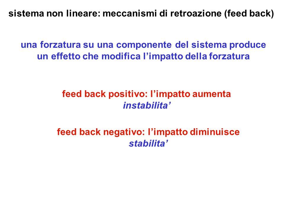 sistema non lineare: meccanismi di retroazione (feed back) una forzatura su una componente del sistema produce un effetto che modifica limpatto della