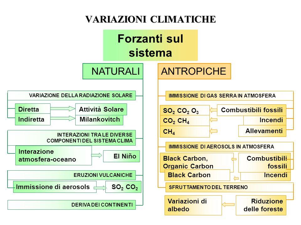 VARIAZIONI CLIMATICHE NATURALIANTROPICHE VARIAZIONE DELLA RADIAZIONE SOLARE ERUZIONI VULCANICHE INTERAZIONI TRA LE DIVERSE COMPONENTI DEL SISTEMA CLIM