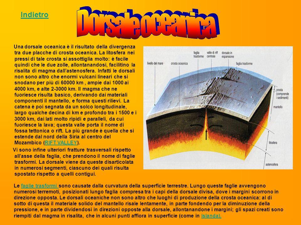 Le faglie trasformi sono causate dalla curvatura della superficie terrestre. Lungo queste faglie avvengono numerosi terremoti, posizionati lungo fagli