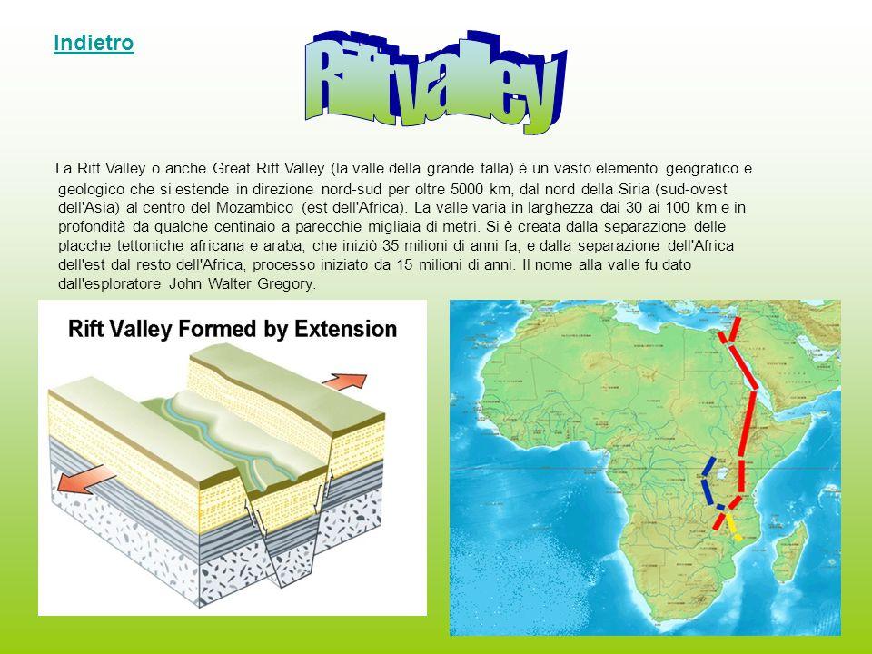 La Rift Valley o anche Great Rift Valley (la valle della grande falla) è un vasto elemento geografico e geologico che si estende in direzione nord-sud