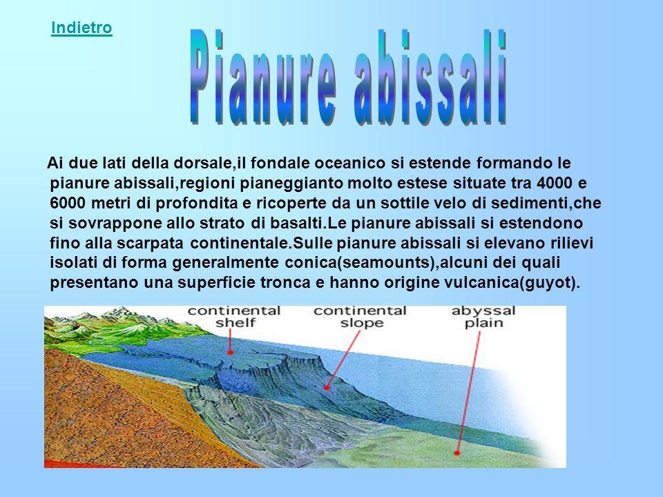 Ai due lati della dorsale,il fondale oceanico si estende formando le pianure abissali,regioni pianeggianto molto estese situate tra 4000 e 6000 metri