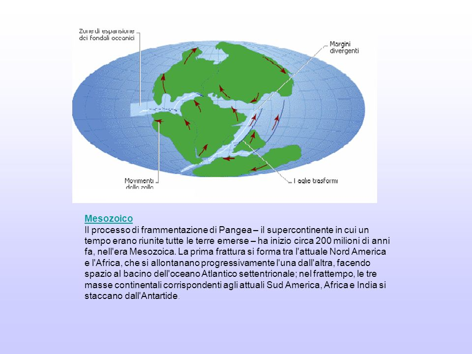 Mesozoico Il processo di frammentazione di Pangea – il supercontinente in cui un tempo erano riunite tutte le terre emerse – ha inizio circa 200 milio