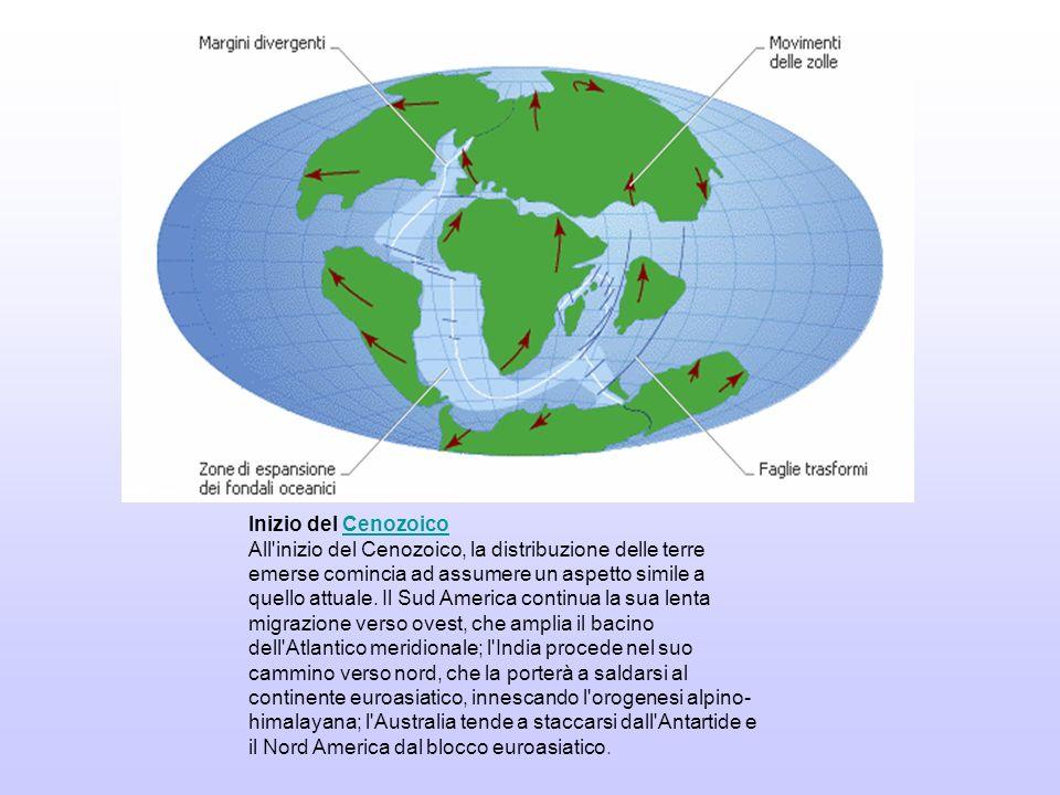 SITUAZIONE ATTUALE L attuale configurazione delle terre emerse risale approssimativamente alla fine del Cenozoico: Nord America e Sud America, dopo essersi temporaneamente allontanate l una dall altra, si sono definitivamente saldate a formare un unico continente, che tende ad allontanarsi da Eurasia e Africa; il movimento dell Africa rispetto all Eurasia ha prodotto il bacino del Mediterraneo, di cui la parte orientale è quanto resta dell antico oceano Tetide; da circa 20 milioni di anni, infine, la frattura che ha generato la penisola arabica continua ad allargarsi facendo spazio al mar Rosso a scapito del golfo Persico, destinato a chiudersi.