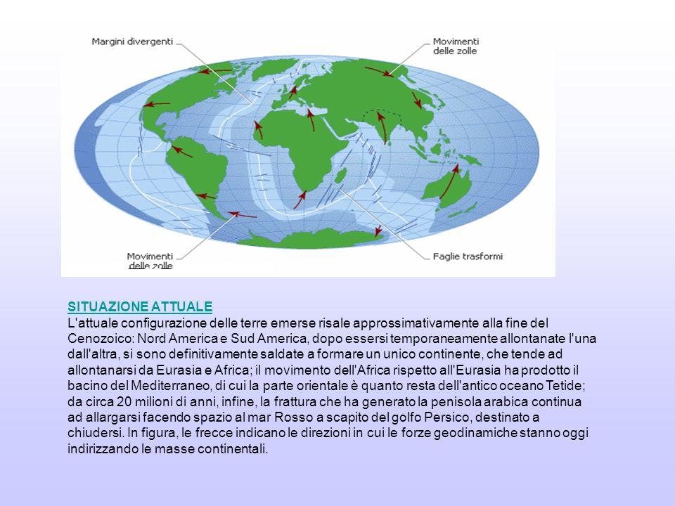 Prove geofisiche Prove geologiche Prove paleontologiche Prove paleoclimatiche