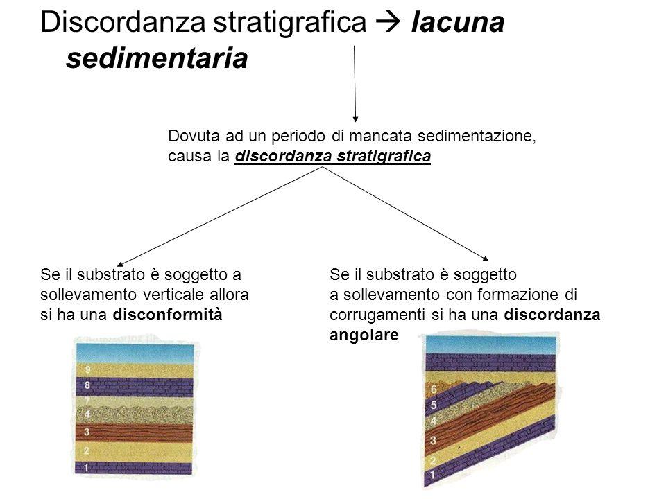 Discordanza stratigrafica lacuna sedimentaria Dovuta ad un periodo di mancata sedimentazione, causa la discordanza stratigrafica Se il substrato è soggetto a sollevamento verticale allora si ha una disconformità Se il substrato è soggetto a sollevamento con formazione di corrugamenti si ha una discordanza angolare