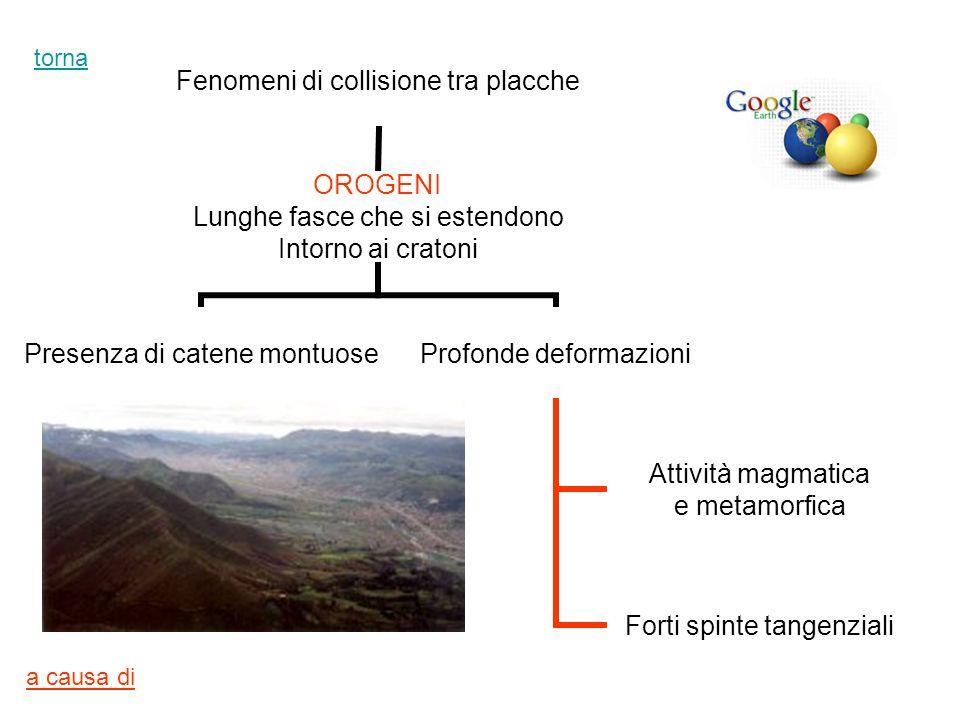 Fenomeni di collisione tra placche OROGENI Lunghe fasce che si estendono Intorno ai cratoni Presenza di catene montuose Profonde deformazioni Attività