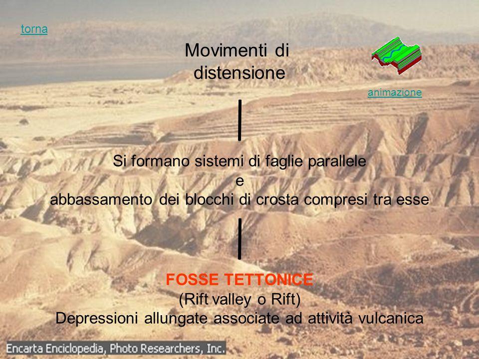 Movimenti di distensione Si formano sistemi di faglie parallele e abbassamento dei blocchi di crosta compresi tra esse FOSSE TETTONICE (Rift valley o
