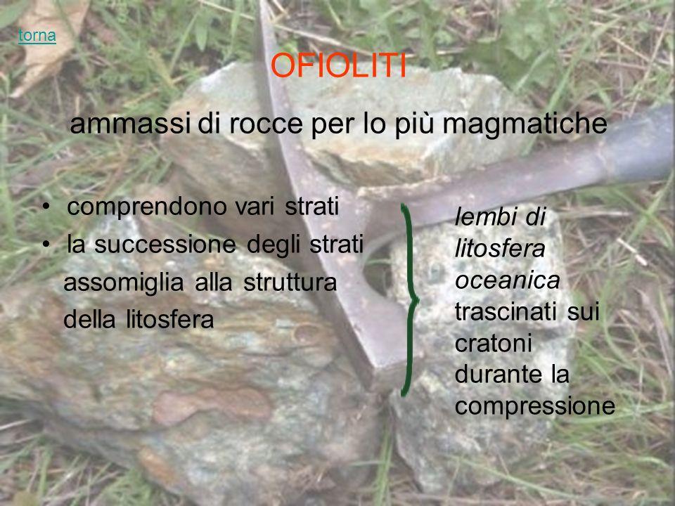 OFIOLITI ammassi di rocce per lo più magmatiche comprendono vari strati la successione degli strati assomiglia alla struttura della litosfera lembi di