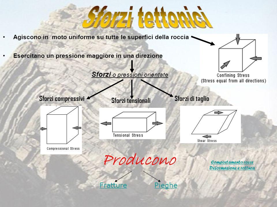 Agiscono in moto uniforme su tutte le superfici della roccia Esercitano un pressione maggiore in una direzione Sforzi o pressioni orientate Sforzi com