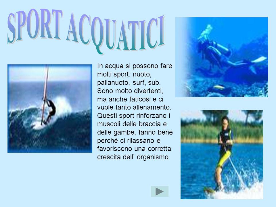 In acqua si possono fare molti sport: nuoto, pallanuoto, surf, sub. Sono molto divertenti, ma anche faticosi e ci vuole tanto allenamento. Questi spor