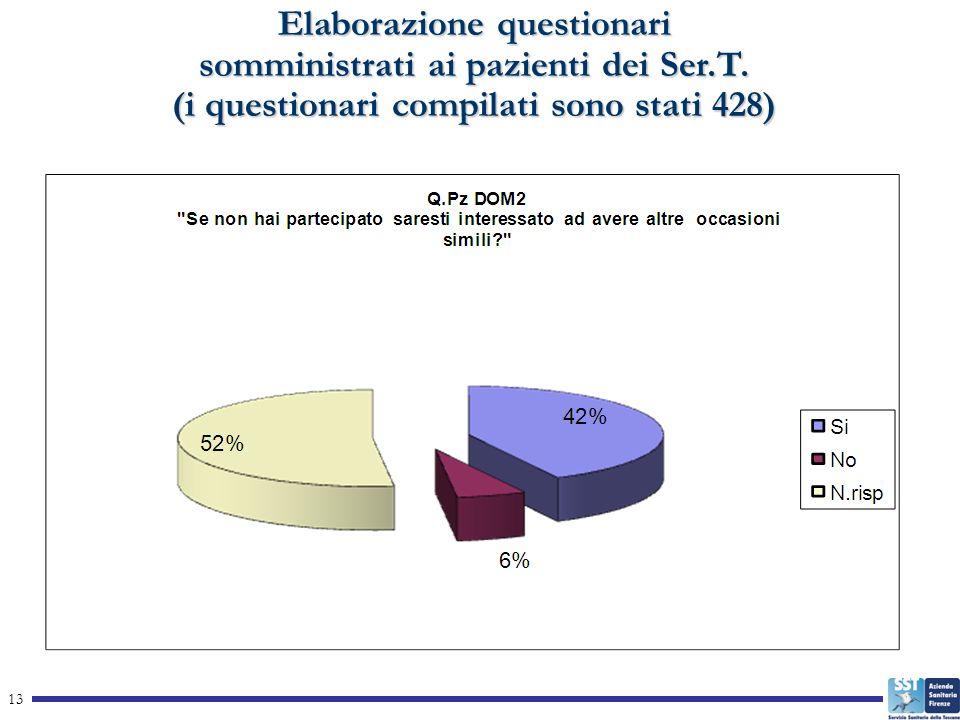 13 Elaborazione questionari somministrati ai pazienti dei Ser.T.