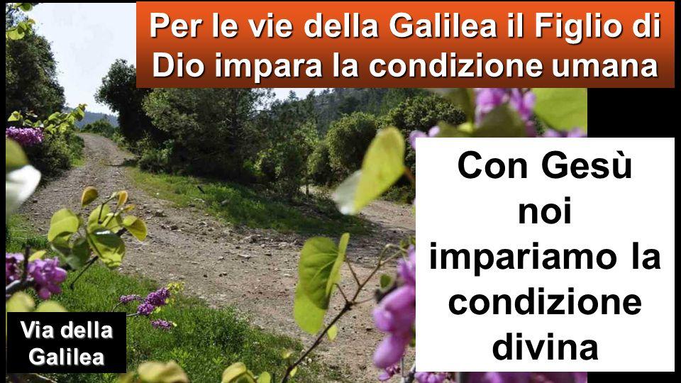 Per le vie della Galilea il Figlio di Dio impara la condizione umana Con Gesù noi impariamo la condizione divina Via della Galilea