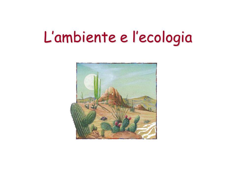 Lecologia Lecologia è la scienza che studia i rapporti tra organismi viventi e lambiente fisico in cui vivono.