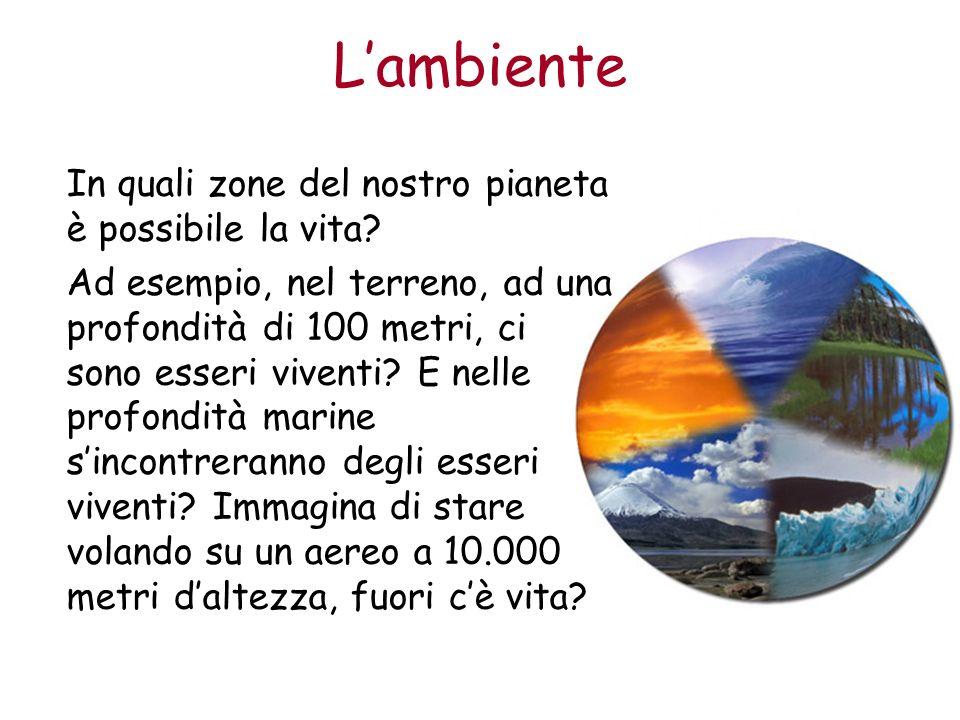 Lambiente Le zone del pianeta Terra in cui le condizioni ambientali permettono lo sviluppo della vita si chiama biosfera.