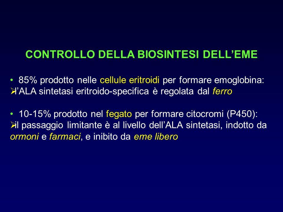 CONTROLLO DELLA BIOSINTESI DELLEME 85% prodotto nelle cellule eritroidi per formare emoglobina: lALA sintetasi eritroido-specifica è regolata dal ferr