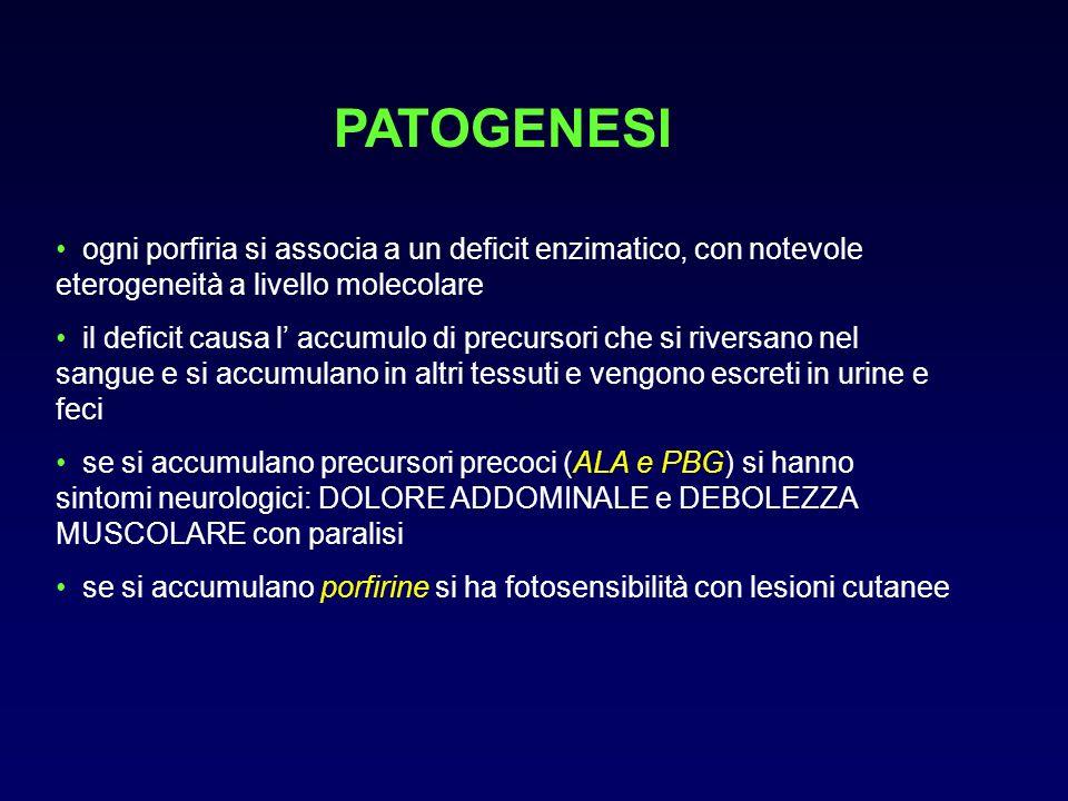 PATOGENESI ogni porfiria si associa a un deficit enzimatico, con notevole eterogeneità a livello molecolare il deficit causa l accumulo di precursori